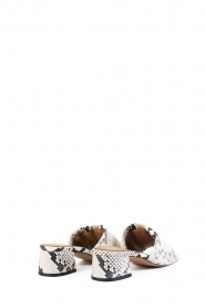 Toral |  Slipper with animal print Diamand | multi  | Picture 4