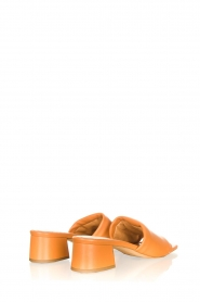 Toral |  Slipper with heel Diamand | brown  | Picture 5