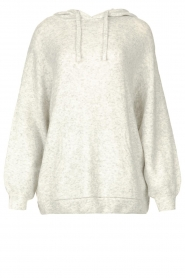 American Vintage |  Knitted hooded sweater Damsville | light grey  | Picture 1