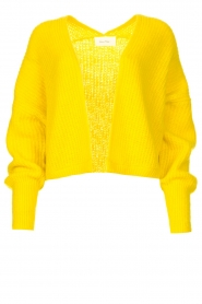 American Vintage |  Knitted cardigan East | yellow  | Picture 1