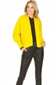 American Vintage |  Knitted cardigan East | yellow  | Picture 2