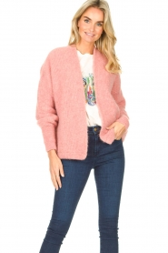 American Vintage |  Knitted sweater East | light pink  | Picture 2