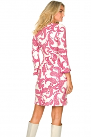 Hale Bob |  Dress with paisley print Waves | pink  | Picture 6