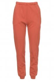 American Vintage |  Cotton sweatpants Feryway | red brown  | Picture 1