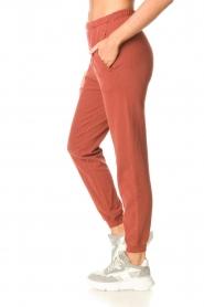 American Vintage |  Cotton sweatpants Feryway | red brown  | Picture 4