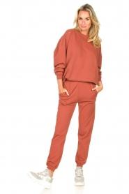 American Vintage |  Cotton sweatpants Feryway | red brown  | Picture 2