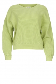 American Vintage |  Cotton sweater with waffle fabric Bowilove | green  | Picture 1