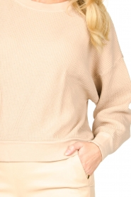 American Vintage |  Cotton sweater with waffle fabric Bowilove | nude  | Picture 7