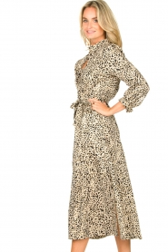 Second Female |  Printed dress Sevilla   | Picture 6