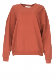 American Vintage |  Cotton sweater Feryway | red brown  | Picture 1