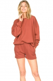American Vintage |  Cotton sweater Feryway | red brown  | Picture 2