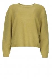 American Vintage | Gebreide sweater Razpark | groen   | Afbeelding 1