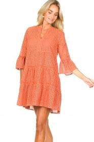 Aaiko |  Cotton embroidery dress Kampur | orange  | Picture 4