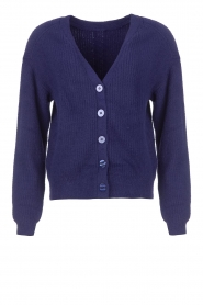 Aaiko |  Deep V-neck cardigan Male | lilac  | Picture 1