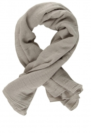 American Vintage |  Soft scarf Fati | light grey  | Picture 1