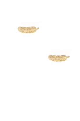 Betty Bogaers | 14k verguld gouden oorbellen Feather | goud