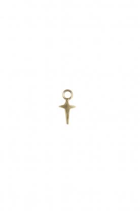 Betty Bogaers | Verguld gouden hanger Pole Star (per stuk) | goud