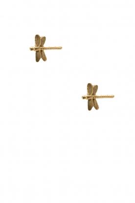 Betty Bogaers | 14k verguld gouden oorbellen Dragonfly | goud
