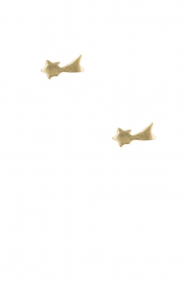 Betty Bogaers |  14k plated gold earrings Shooting Star | gold
