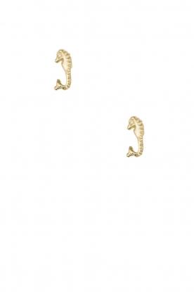 Betty Bogaers | 14k gouden oorbellen Seahorse | goud
