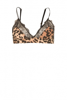 Love Stories |  Bralette Love Lace |  animal print