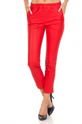 Arma | Lamsleren stretchlegging Roche | rood