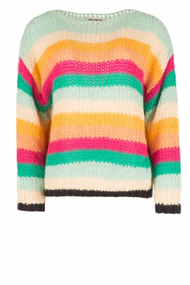Essentiel Antwerp |  Heavy knitted sweater Ourebi | multi