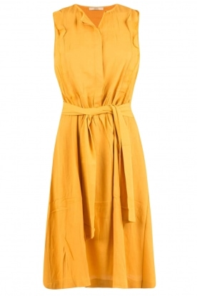 Sessun |  Midi dress Quetzal | yellow