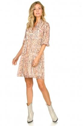 Look Zebra print dress Sulmona