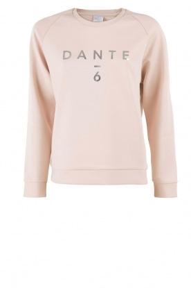 Dante 6 | Trui Logo | zachtroze