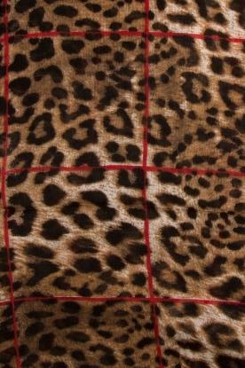 IKKS | Sjaal met panterprint Sofia| bruin