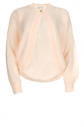 Dante 6 |  Cardigan with button Fade | pink