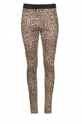 Les Favorites |  Leopard printed legging Vallery  | animal print