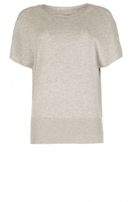 Hunkydory |  Sweater with short sleeve Coy | grey