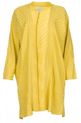 Lolly's Laundry |  Cardigan with golden stripes Kimmie | yellow