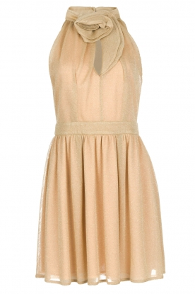 Atos Lombardini |  Dress Richelle | gold