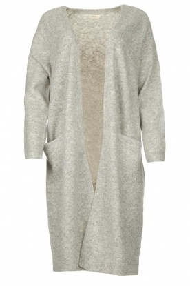 JC Sophie | Soft knitted cardigan Estevania | grey
