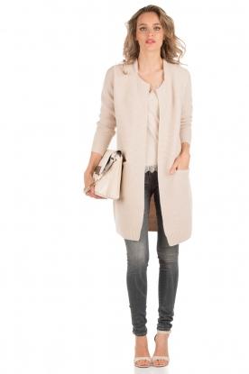 Denham | High waisted skinny jeans Spray Gars lengtemaat 34 | grijs