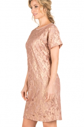 Rosemunde | Semi-sheer jurk Megan | roze/goud metallic
