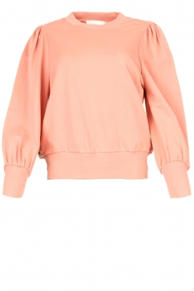 Notes Du Nord | Sweater with puff sleeves Oxford | pink