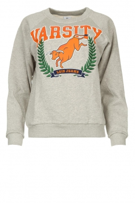 Lois Jeans | Sweater with print Bull | grey
