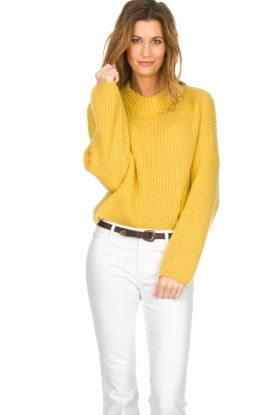 Be Pure |  Knitted turtleneck sweater | yellow