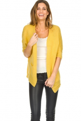 Be Pure |  Knitted cardigan Jasmijn | yellow
