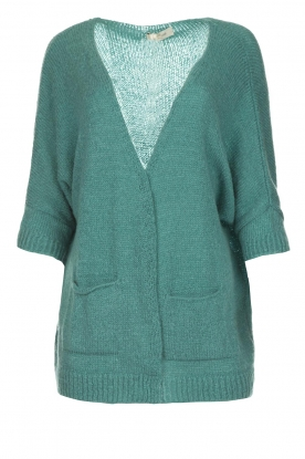 Be Pure |  Knitted cardigan Jasmijn | green