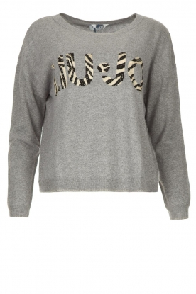 Liu Jo | Logo sweater Domenico | grey