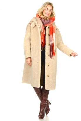 Look Teddy coat with embroided details Sable
