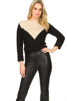 Fracomina |  Sweater met motief Alida | black
