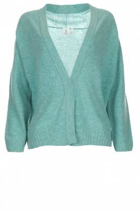 Knit-ted |  Cardigan Emma | green