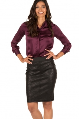 Aaiko |  Pencil skirt Brynn | black