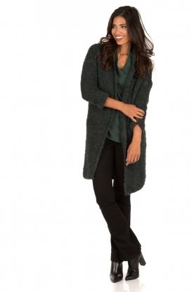 Cardigan Berenie | green